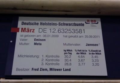 Infotafel für Milchkuh, Grüne Woche 2012, Messegelände Berlin